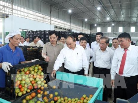 PM suggests agriculture triangle for Lam Dong development model