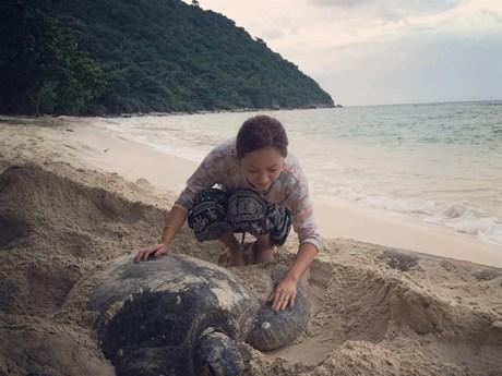 Con Dao Island pioneers sea turtle protection
