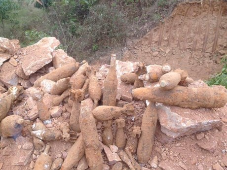 Vietnam, RoK team up in dealing with bomb, mine pollution