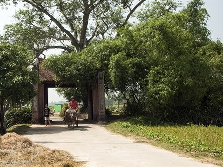 Experts discuss protecting Hanoi's heritage