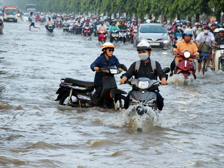 Vietnam exerts efforts to ease climate change impacts: official
