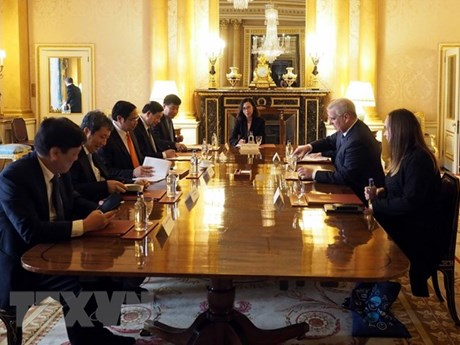 Party official: Vietnam wishes to promote ties with UK