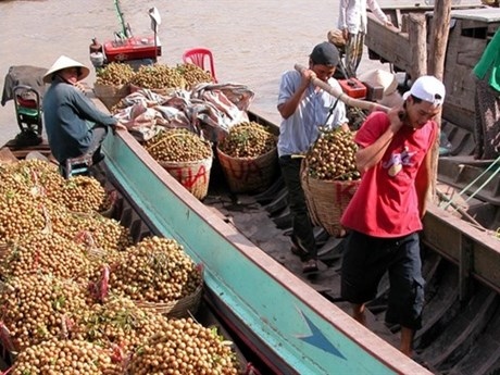 Vegetable, fruit export growth slows down