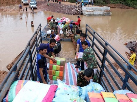 Rice seedlings to be sent to Laos after disasters