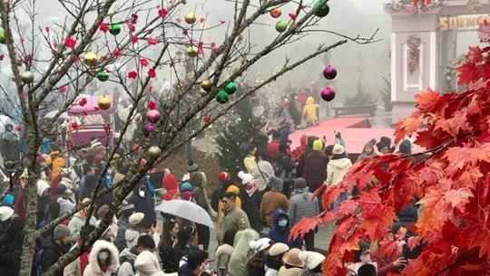Sa Pa resort welcomes 65,000 visitors during New Year holiday