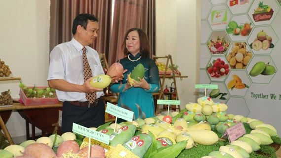 An Giang province promotes agro-fishery exports