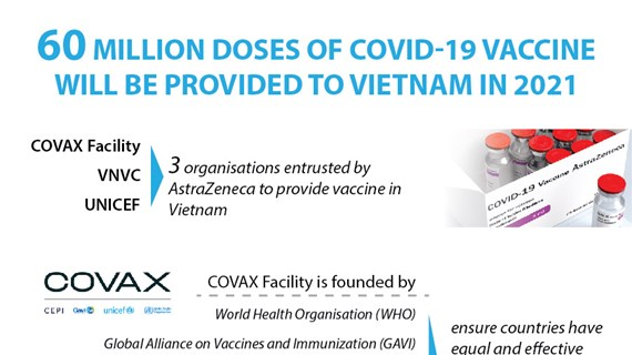 Vietnam to receive 60 million doses of COVID-19 vaccine in 2021