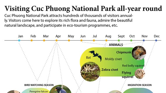 Visiting Cuc Phuong National Park all-year round