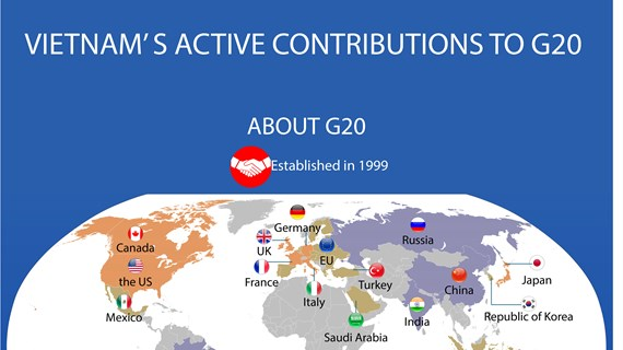 Vietnam's active contributions to G20