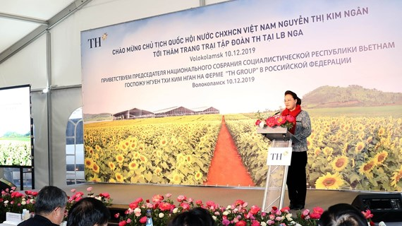 NA leader visits Vietnamese embassy, TH Group's project in Russia