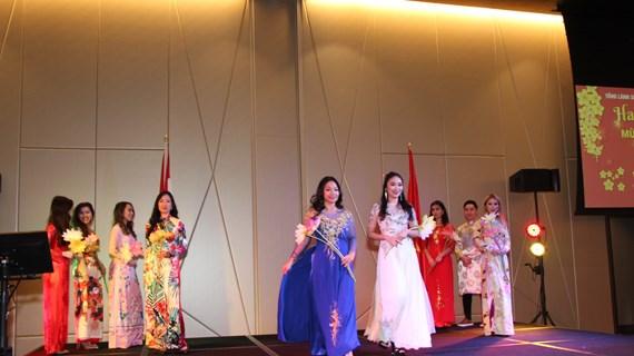 Overseas Vietnamese gather for Tet celebration