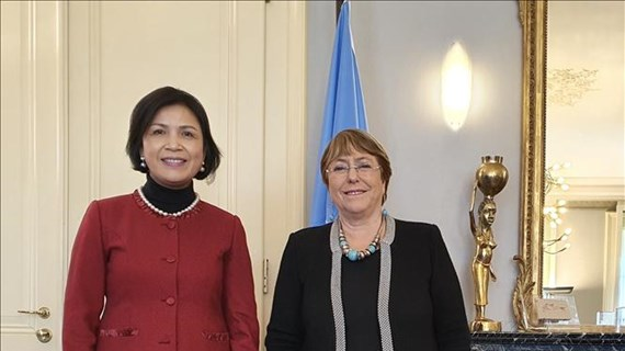 UN High Commissioner lauds Vietnam's human rights achievements
