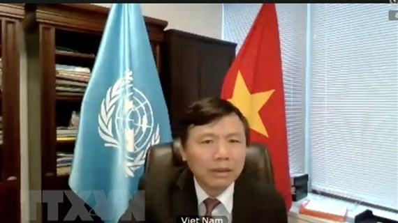 Vietnam joins UNSC open debate on peace operation, human rights