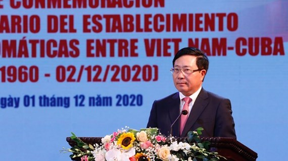 Vietnam treasures solidarity, friendship with Cuba: Deputy PM