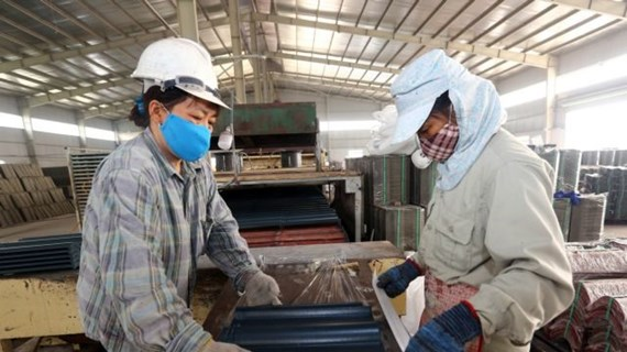 More actions needed to improve FDI efficiency in Nghe An