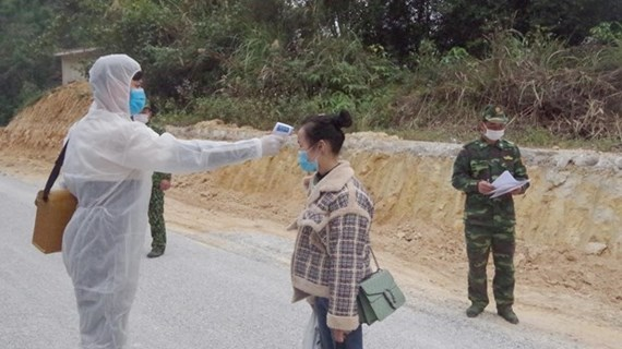 Thanh Hoa detects numerous illegal entries
