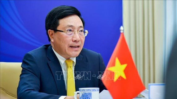 IAMM: Vietnam, ASEAN cooperate to drive back pandemic
