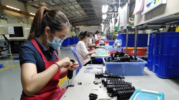 Vietnamese Government always creates best possible conditions for foreign firms, investors