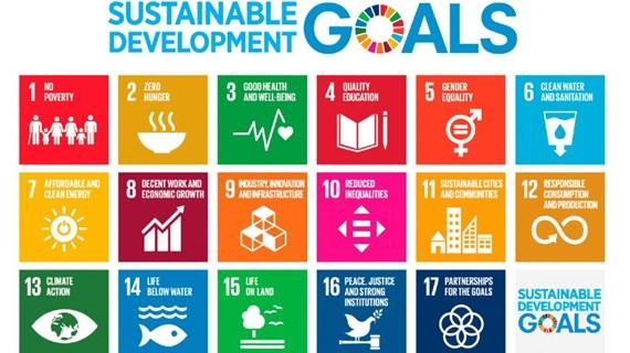 Vietnam needs stronger efforts to achieve SDGs: Workshop