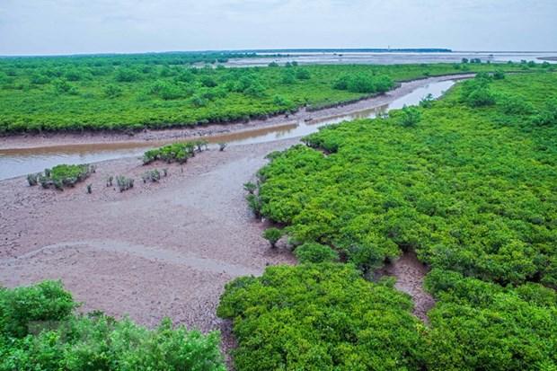 Exploring nine Ramsar sites of Vietnam hinh anh 1