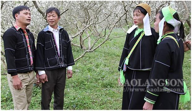 Lang Son promotes folk music value hinh anh 1