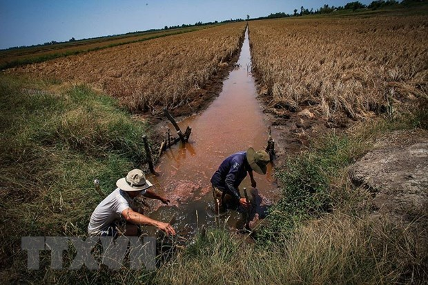Utmost efforts needed to help Mekong Delta overcome drought hinh anh 1