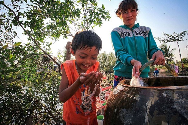 Utmost efforts needed to help Mekong Delta overcome drought hinh anh 3