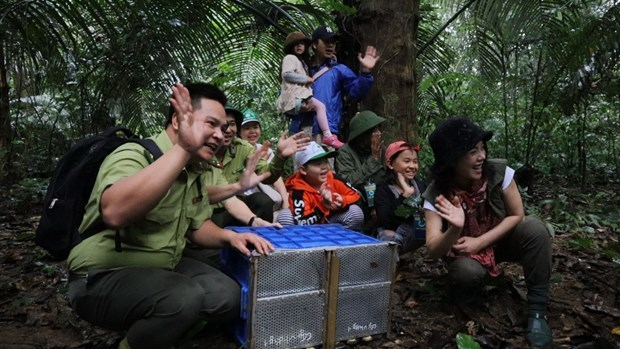 'Forest school' helps spread love for nature hinh anh 2