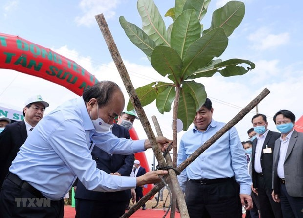 Int'l Mother Earth Day - Appeal for joint actions for better future hinh anh 2