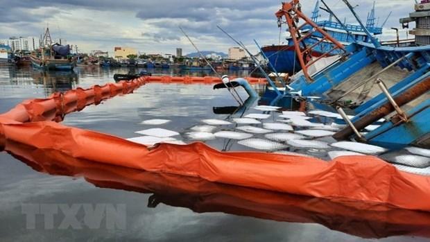 More risks of environmental incidents at sea amid pandemic hinh anh 1