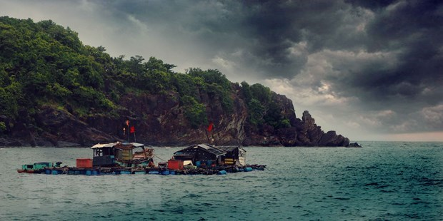 Tranquil beauty of Hon Chuoi - outpost island in southwestern sea hinh anh 3