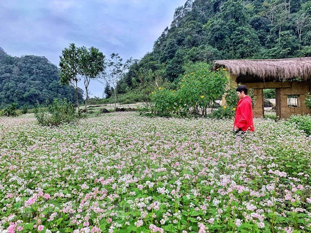 Vietnamese opt for sustainable tourism after COVID-19 hinh anh 6
