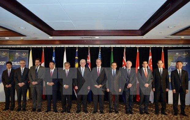 TPP trade ministers gather in Hawaii, eyeing final deal hinh anh 1