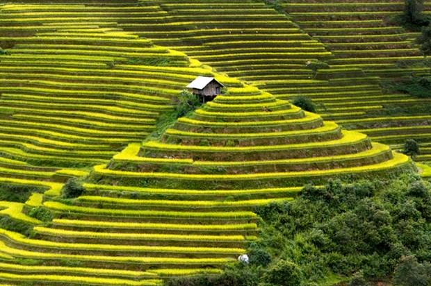 Mu Cang Chai: astonishing destination for tourism hinh anh 1