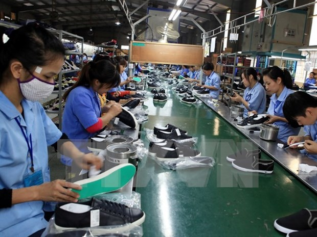 Local firms eye South African market hinh anh 1
