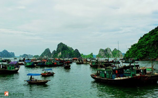 Soc Trang turns sea-borne economy into major pillar hinh anh 1