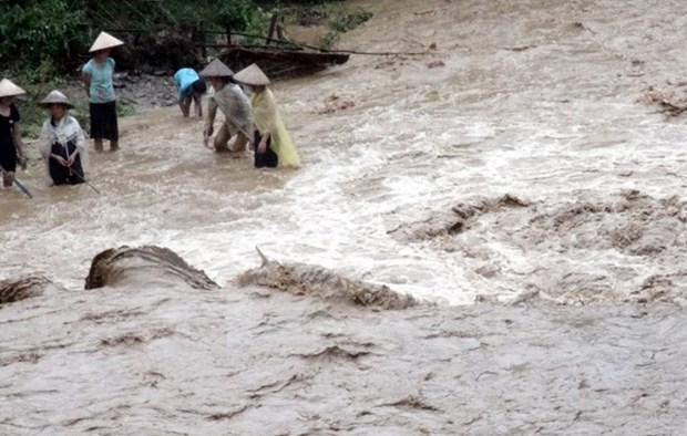 Another seven dead, injured by floods in northern region hinh anh 1