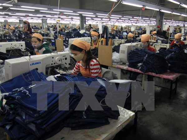 Mass inspections launched in garment and textile hinh anh 1