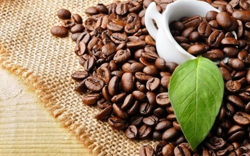 Starbucks to sell Da Lat Arabica coffee globally hinh anh 1