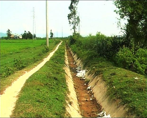 Da Nang city to see water shortage hinh anh 1