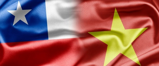 Vietnam, Chile strengthen relations hinh anh 1