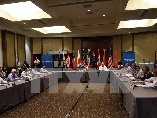 Vietnam ends two-sided TPP talks hinh anh 1