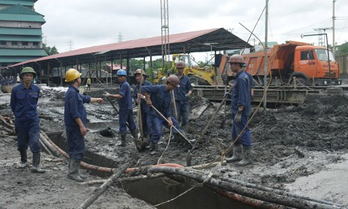 Vinacomin pledges sufficient coal for power plants hinh anh 1