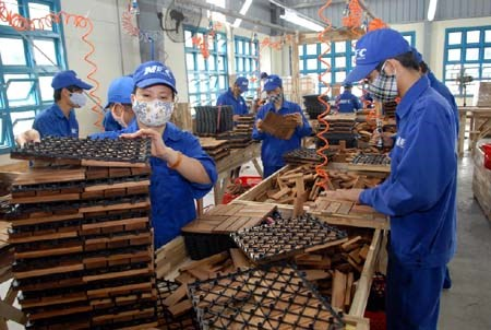 Timber industry may flounder later in year hinh anh 1