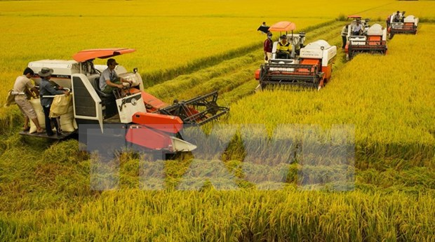 Canada hopes to expand trade in Mekong Delta hinh anh 1