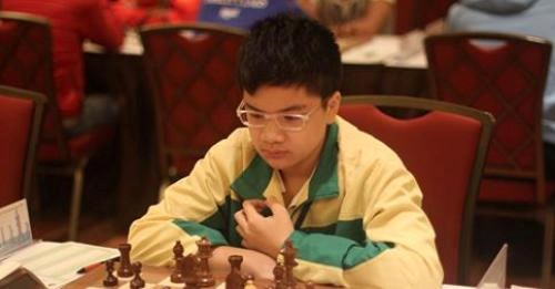 Vietnamese master wins gold in int'l chess competition hinh anh 1