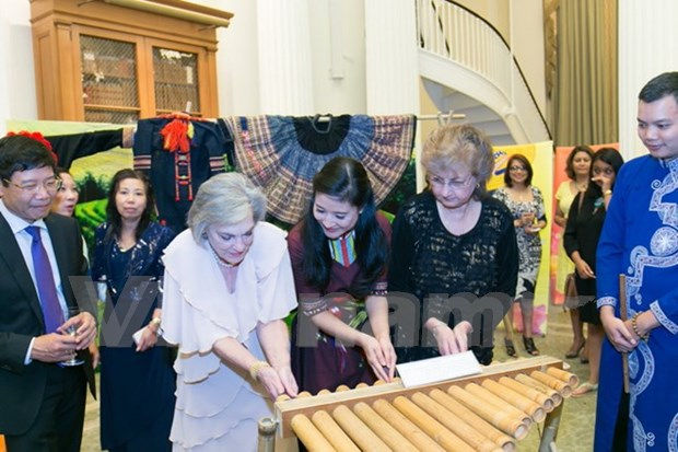 Vietnamese culture shines in US hinh anh 1