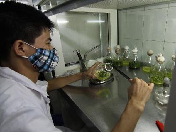Ministry of Science and Technology initiates start-up atmosphere hinh anh 1