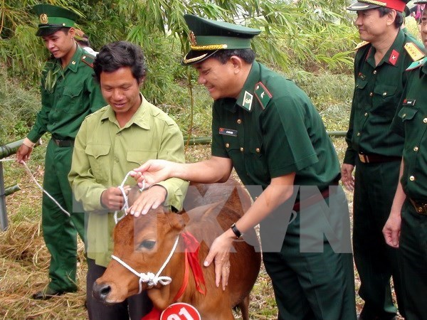 Viettel donates cows to impoverished households in Son La hinh anh 1