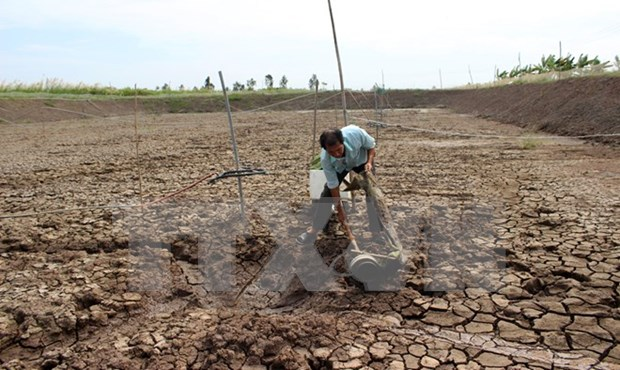 Hau Giang sets up 27 projects to counter climate change hinh anh 1